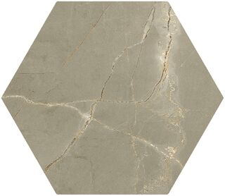 Pulpis Taupe Hex 20X24