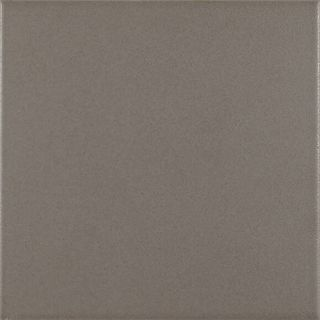 Antigua Base Gris Pt021